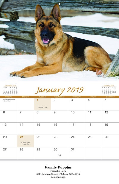 Canine Companions Wall Calendar - Stitched
