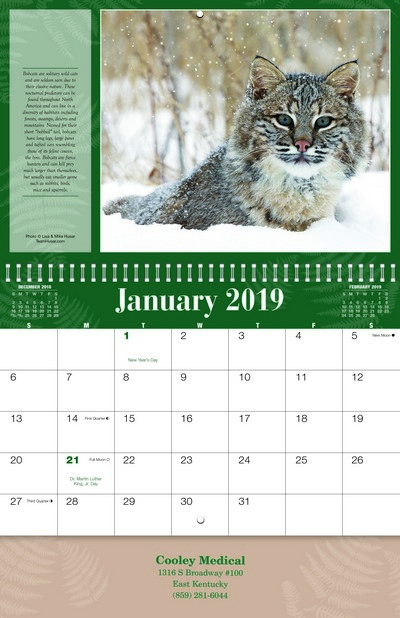 Wildlife Wall Calendar - Spiral