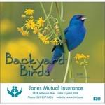 Picture of Backyard Birds Wall Calendar - Stapled