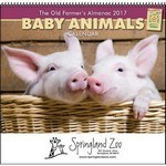 Picture of The Old Farmer's Almanac Baby Animals - Spiral