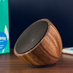 Picture of Coconut Speaker