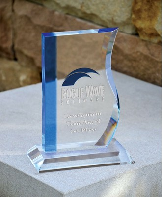 Mini Wave Award