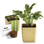 Picture of Flower Pot Set with Basil Seeds