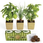 Picture of Growpot Eco-Planter Herb