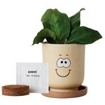 Picture of Goofy Grow Pot Eco-Planter with Chive Seeds