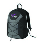 Picture of Elements Bungee Backpack