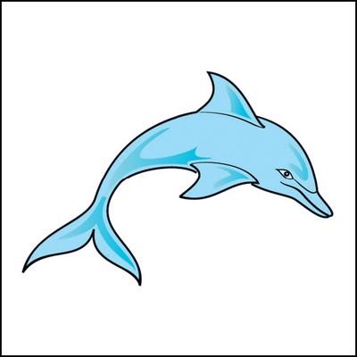 Dolphin Stock Tattoo
